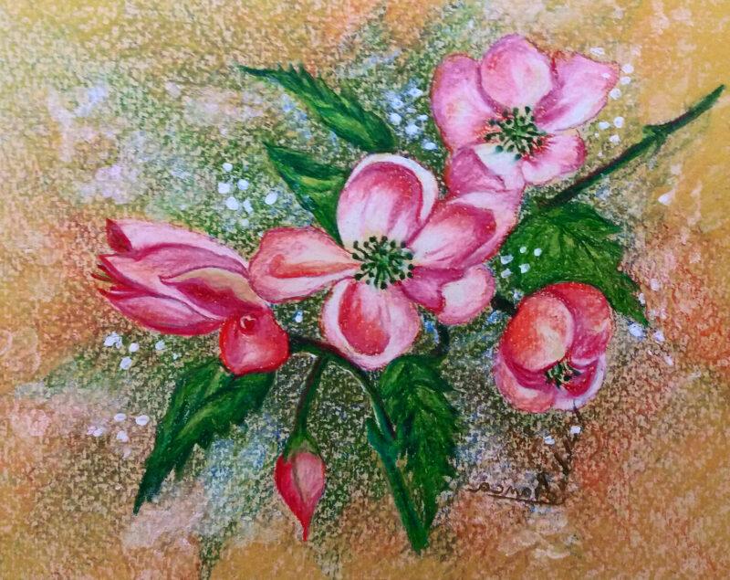 Blossom – colored pencils