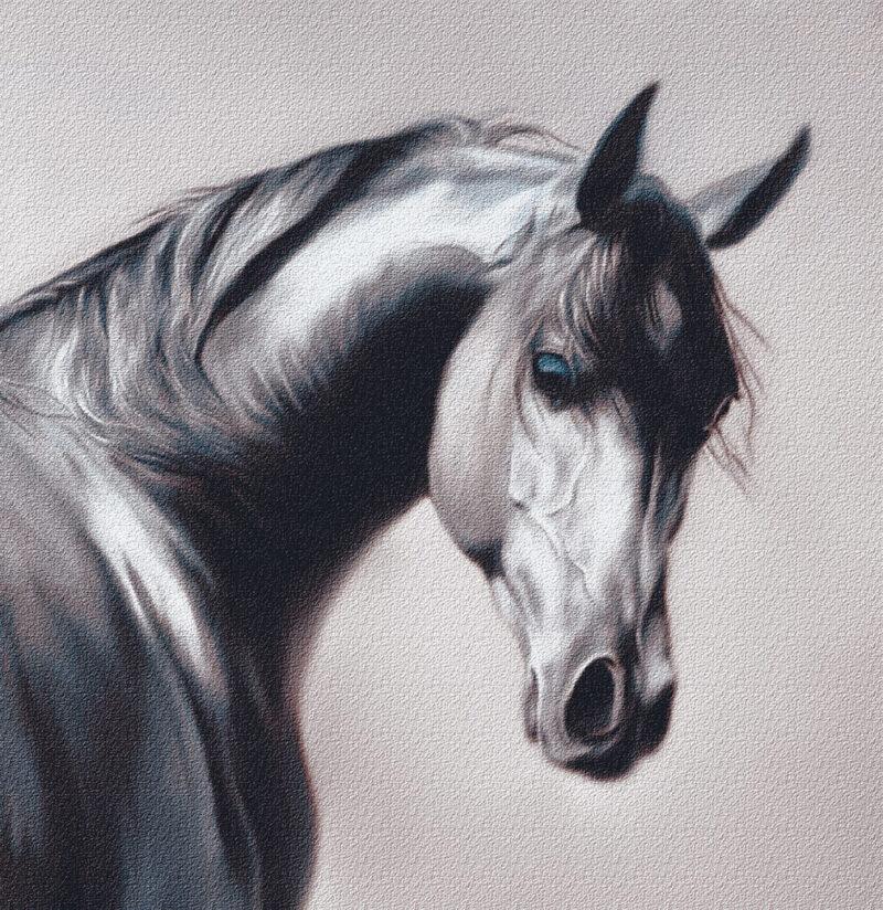 Horse – digital art