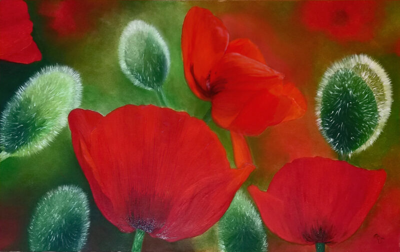 Painted Poppies – oil on canvas